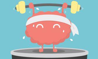 ダイエット成功の鍵!行動や食欲を司る前頭葉をコントロール
