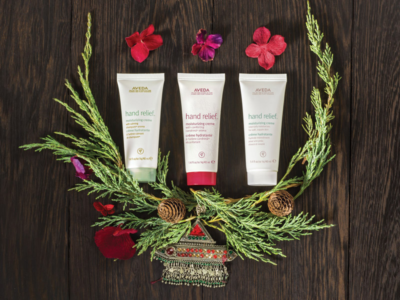 AVEDA_2016holidaygifts03