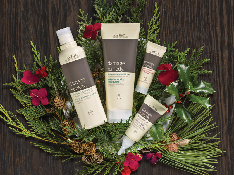 AVEDA_2016holidaygifts06