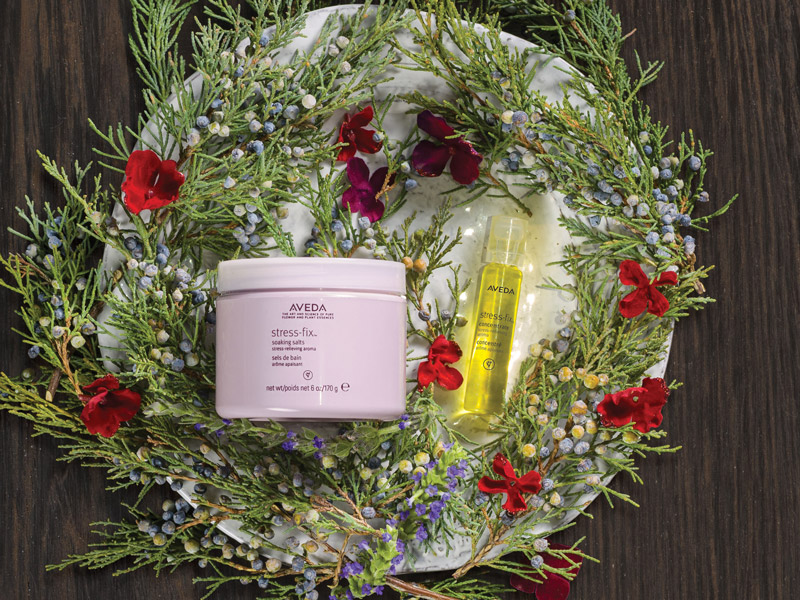 AVEDA_2016holidaygifts07