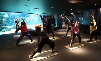 夜の水族館を堪能。サンシャインシティで女性限定の夜ヨガ開催