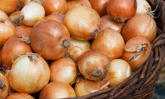 春野菜でダイエット! 代謝UPに役立つ「新玉ねぎ」のレシピ6選