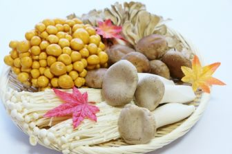 【月齢ダイエット】10月12日「蟹座の下弦の月」はファスティングで胃をケア