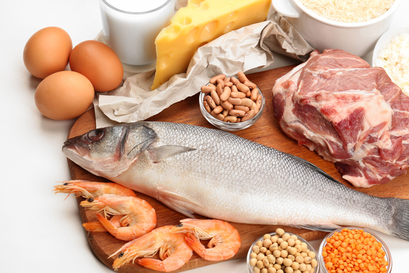 ABC_FoodQA09_protein01
