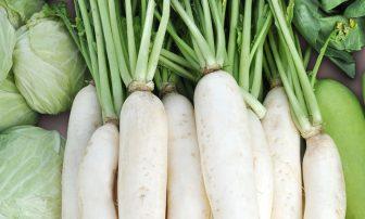 旬野菜で正月太り改善!大根と白菜を使った【ダイエットレシピ】4選