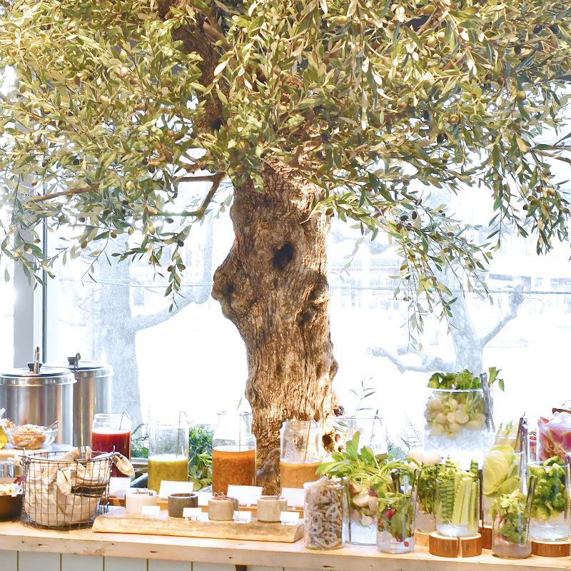 cosmekitchen-olive2