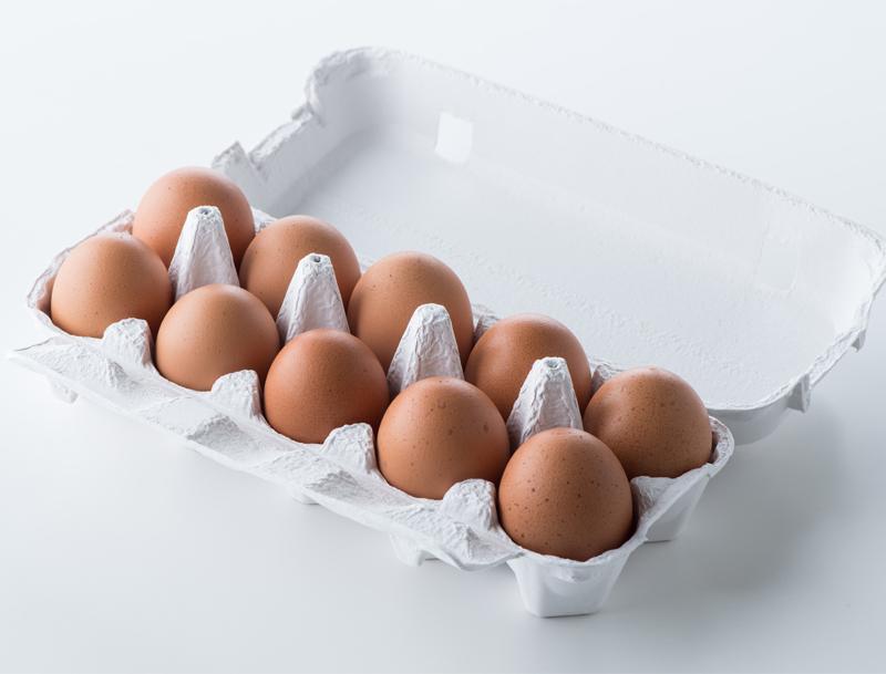 パックに入った10個の卵