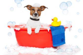 「春バテ」回復には入浴が効果的!39℃のお湯に15分浸かるのがポイント
