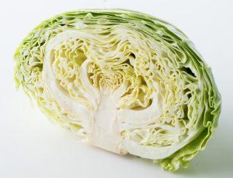 """キャベツは""""食べる胃腸薬""""。正しい保存法や素材を活かした調理法を解説"""