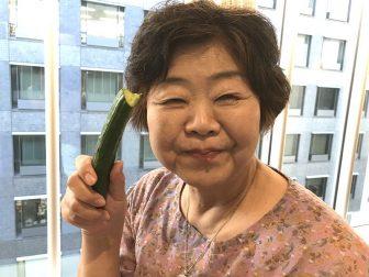 オバ記者、きゅうりダイエットで「2か月で11kg減量」を目指す!