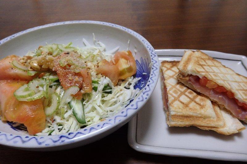 お皿に盛り付けたサラダとホットサンド