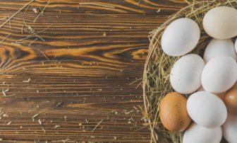 卵の賞味期限は?賞味期限切れの卵は食べられる?赤と白の違いは?など【卵のQ&A】