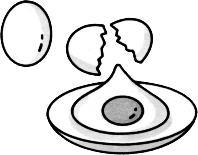 卵イラスト