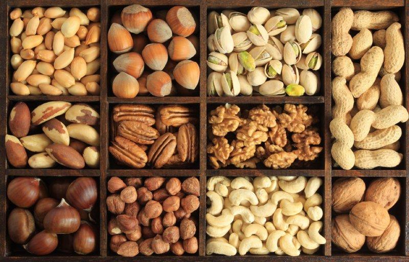 11種類のナッツの写真