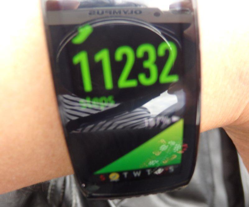 1万1231歩を記録した、腕につけた歩数計