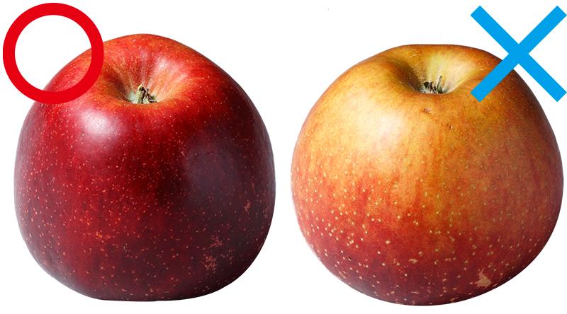 2つのりんごをならべて比較