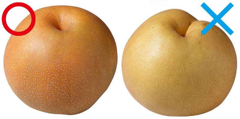 2つの和梨をならべて比較