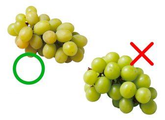 甘い&おいしいフルーツの見分け方・選び方 りんご、みかん、梨などについてプロが指南