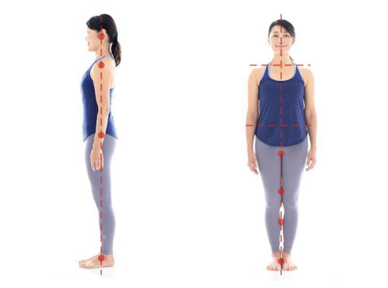 正しい姿勢を正面と横から見た写真