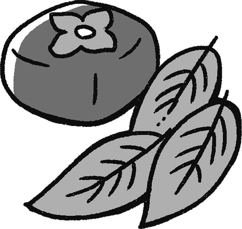 柿の葉と実のイラスト