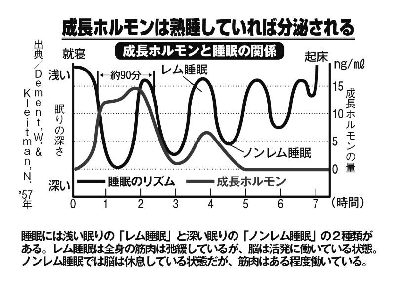 成長ホルモンと睡眠の関係を表したグラフ