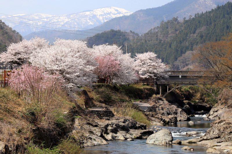 兵庫県養父(やぶ)市