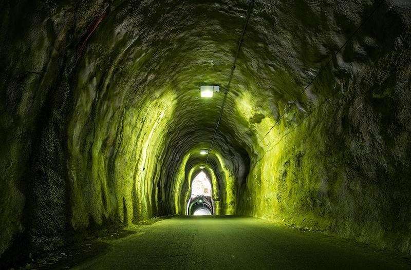 ごつごつしたトンネルの中を薄黄緑色の光がほのかに照らしている