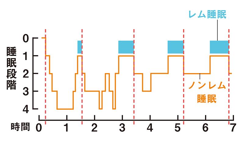 レム睡眠とノンレム睡眠を時間ごとにどのくらいの睡眠状態かを表したグラフで