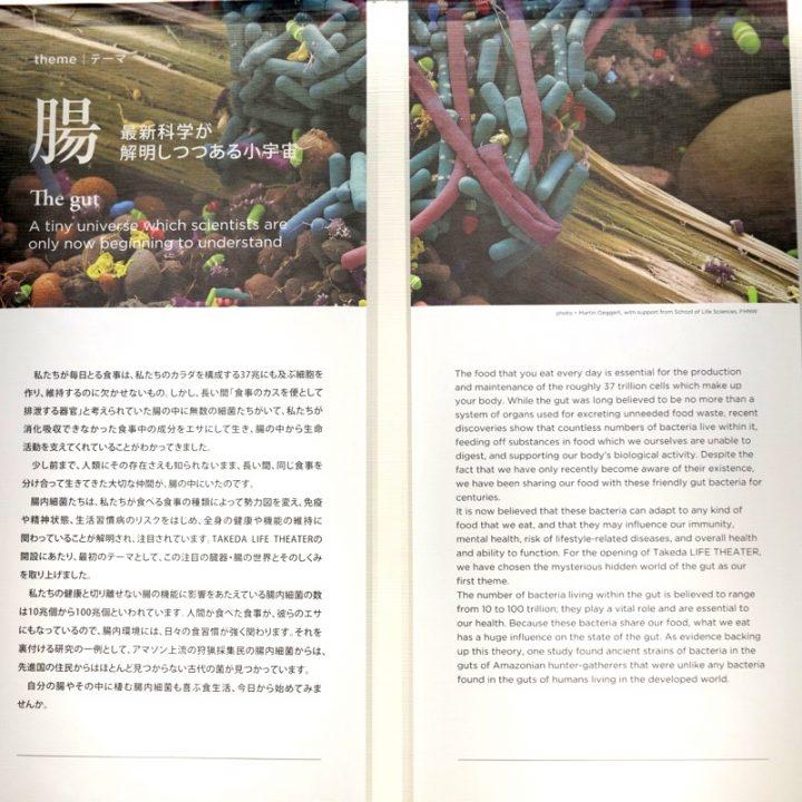 腸についての解説する展示