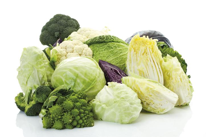 キャベツ、カリフラワーなど野菜が並んでいる