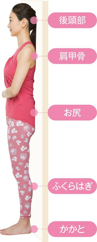 直立して、後頭部、肩甲骨、お尻、ふくらはぎ、かかとが壁についている女性
