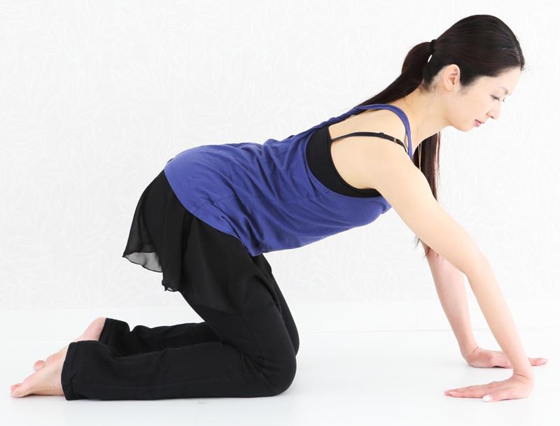 四つん這いになり、おしりを後ろに引き、腕の内側を伸ばす