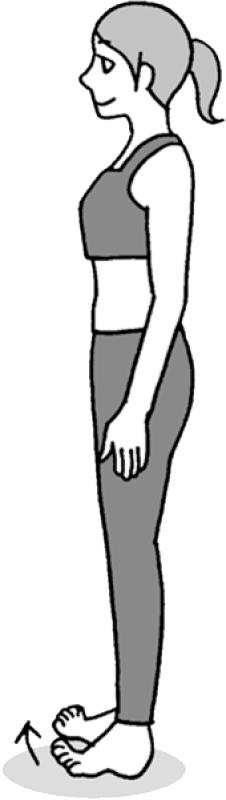 直立し足指だけ床から離して反らせた女性イラスト