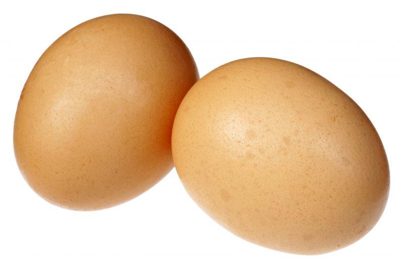 卵が2つ並んでいる