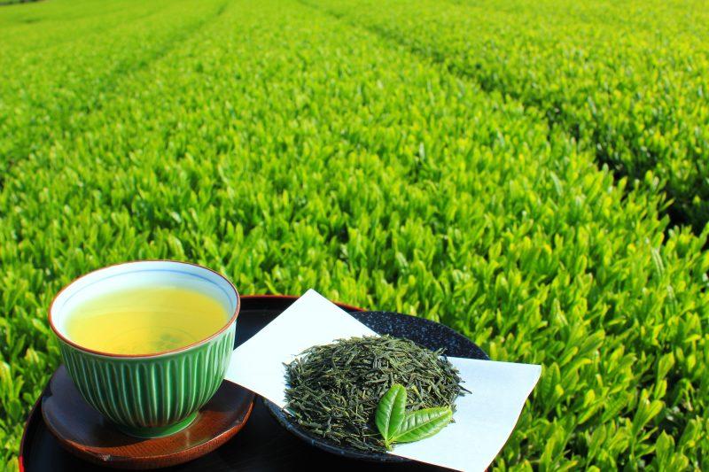 茶畑を背景に茶碗に入った緑茶と茶葉がお盆にのっている