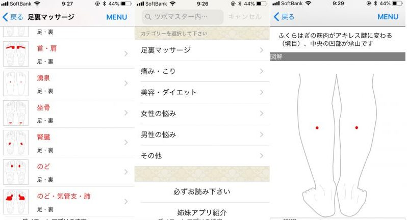 アプリ「ツボマスター」の使用例画面