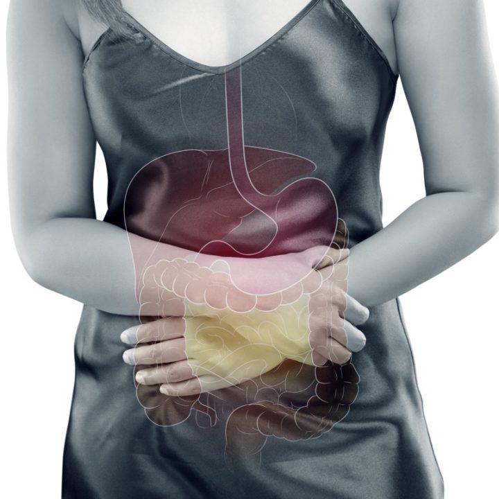 腸のイメージ写真