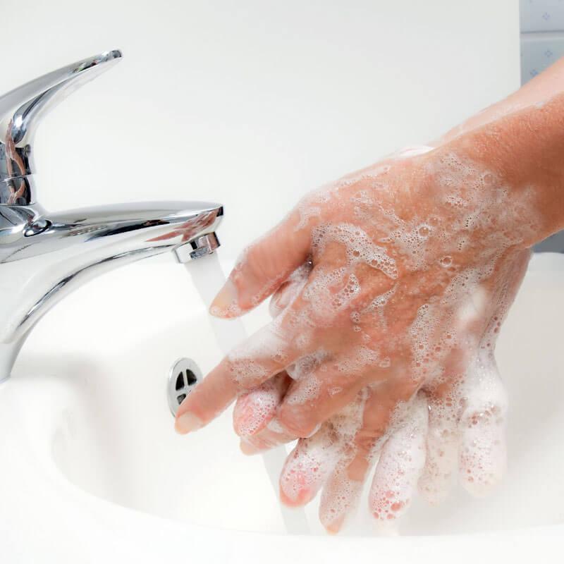 手洗いの様子