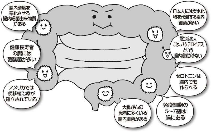 腸のイラストに、腸に関する知識がふきだしに書いてある