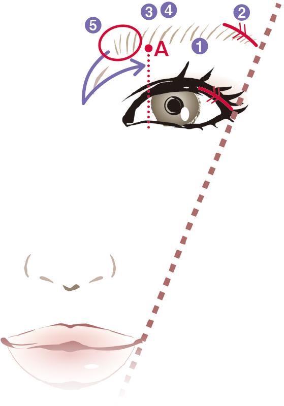 石田ゆり子眉の描き方イラスト