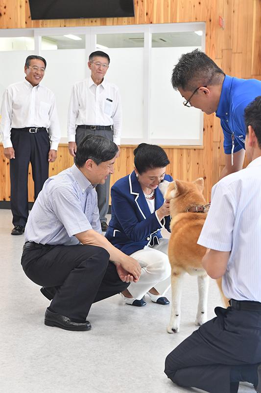天皇陛下と皇后雅子さまが膝を折り、秋田犬と笑顔で触れ合っていらっしゃる