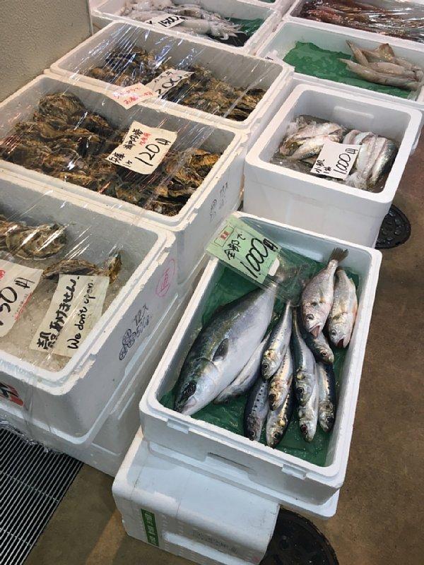 築地に並ぶ魚