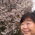 オバ記者と梅の木