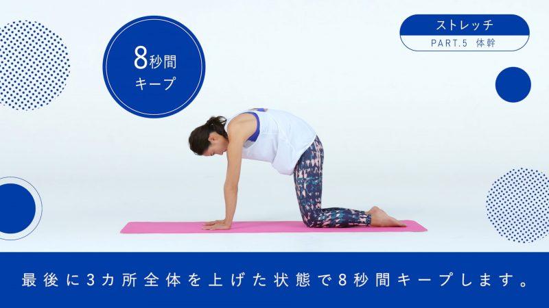 『BI-HA-DANCE』体幹ストレッチ3