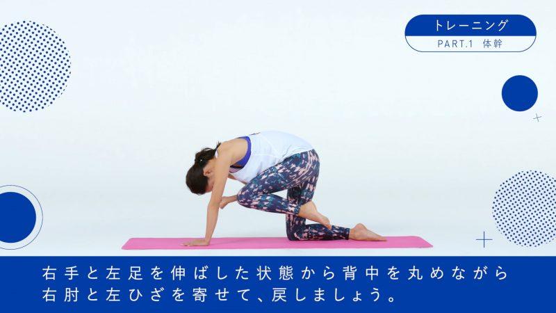 『BI-HA-DANCE』体幹トレーニング3