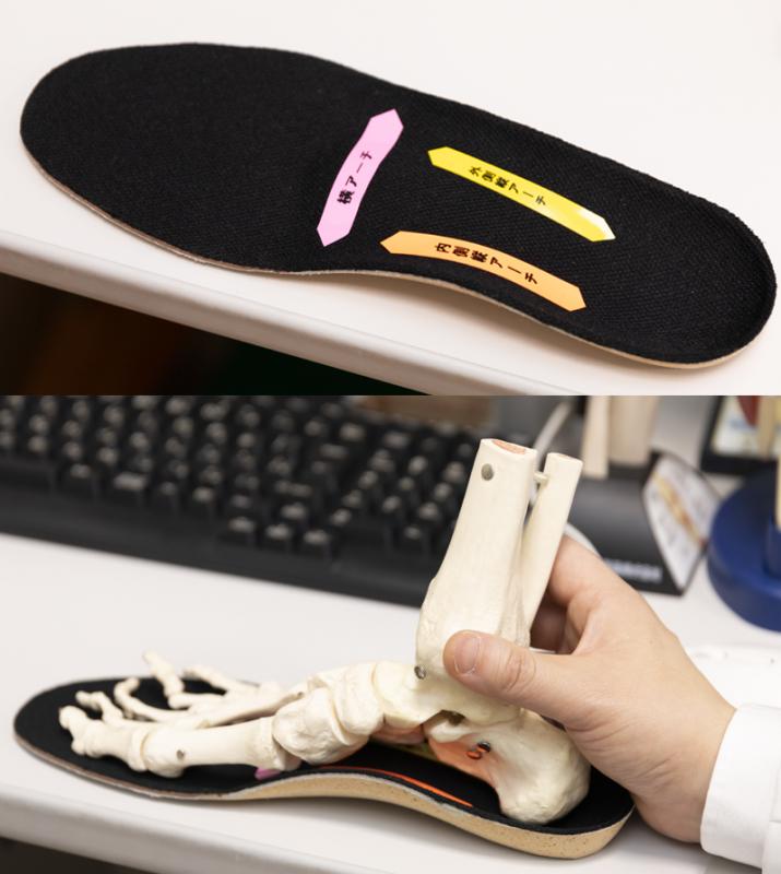 インソールと足の骨格模型使ってをアーチの説明をしている