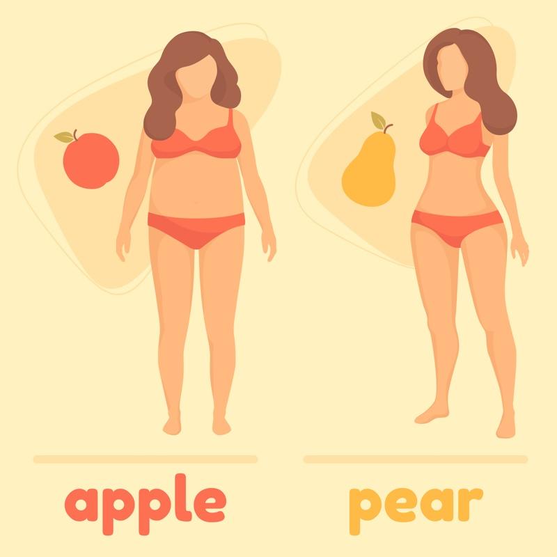 りんご型体形と洋ナシ型体形の女性のイラスト