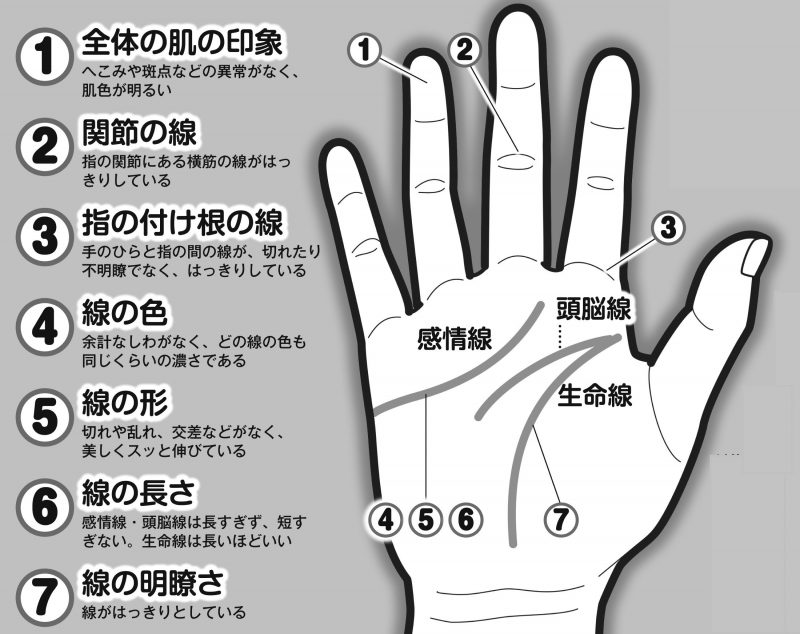 手のひらの7つのチェックポイントをイラストで図解