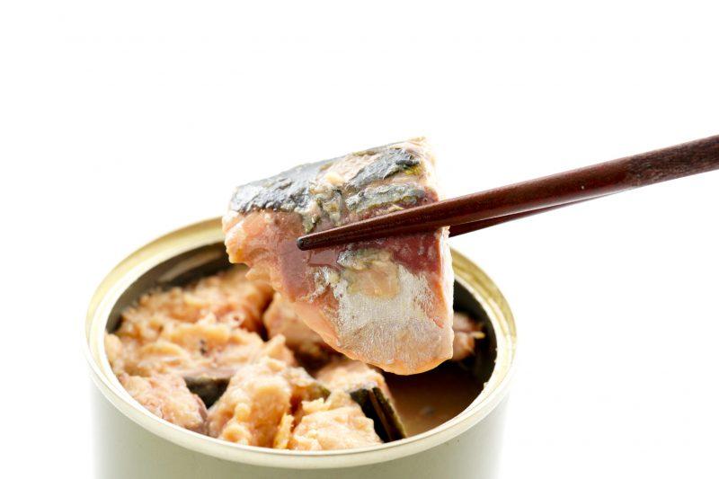 さばの水煮缶の身を箸でつまんでいる