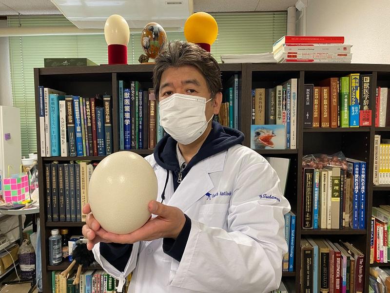 ダチョウ抗体マスクをして、両手にダチョウの卵を持った、京都府立大学学長、獣医師、獣医学博士の塚本康浩さん
